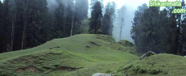 Bagsaid-valley-Mandi---Near-Shikari-Devi